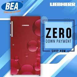 leabherr-frg3-pic1